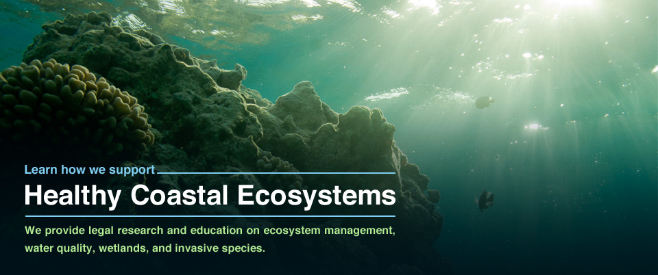 Healthy Coastal Ecosystems