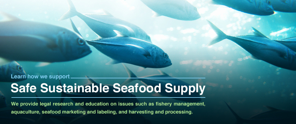 Safe Sustainable Seafood Supply