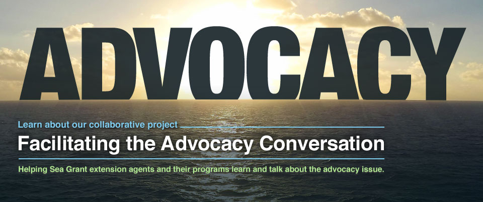 Facilitating the Advocacy Conversation